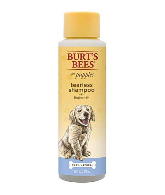 Burt's Bees tearless puppy shampoo with buttermilk, available on Amazon