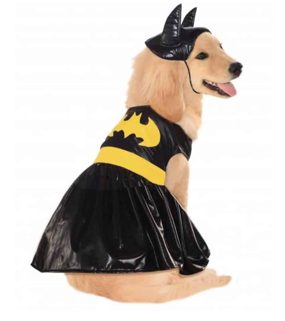 Batgirl superhero dog costume, available on Baxterboo
