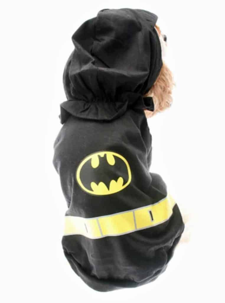 Batman costume de superhéro chien