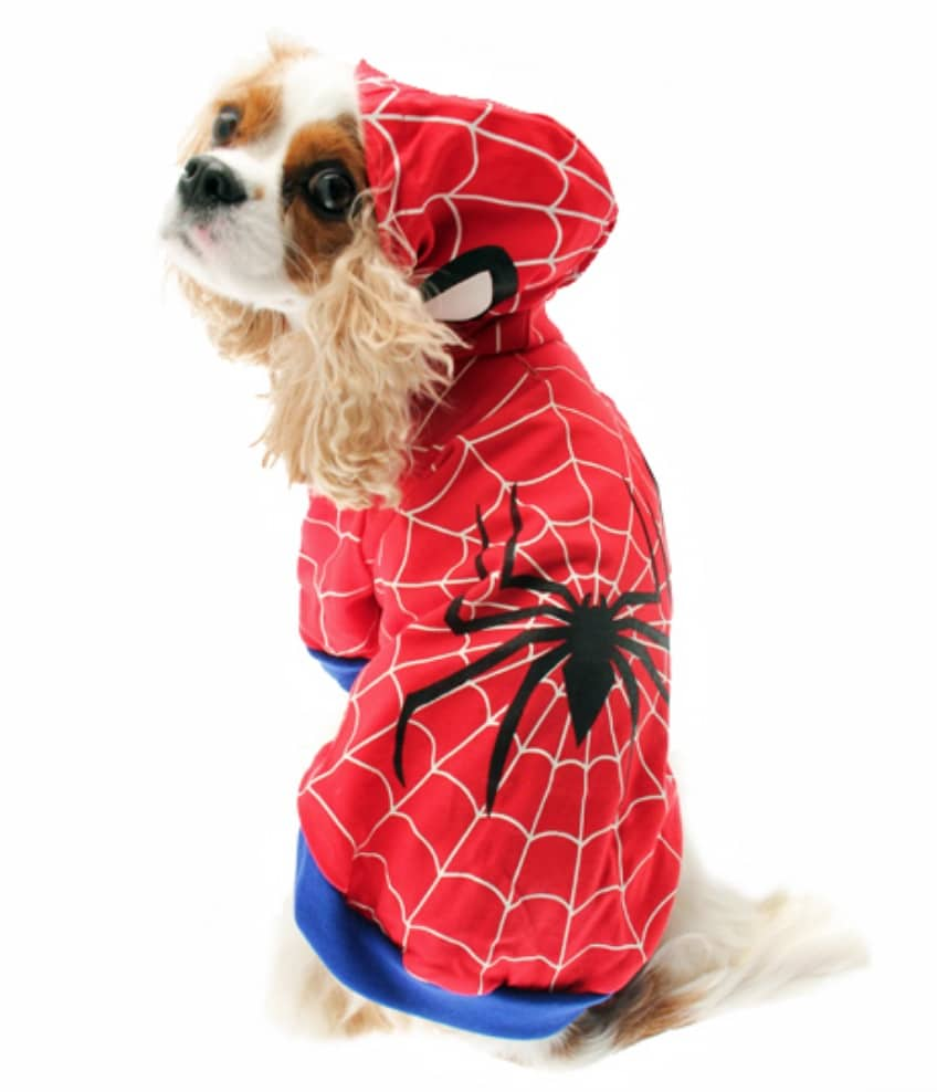 Marvel Spiderman costume halloween pour chien